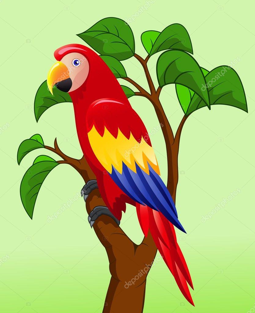 Excepcional desenho de pássaro arara — Vetores de Stock © idesign2000 #10349950 VJ79