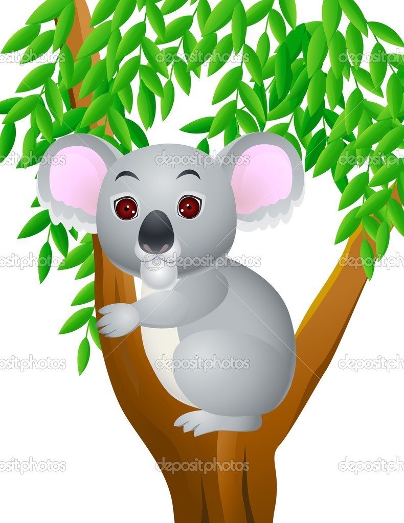 Cartone animato koala — vettoriali stock idesign