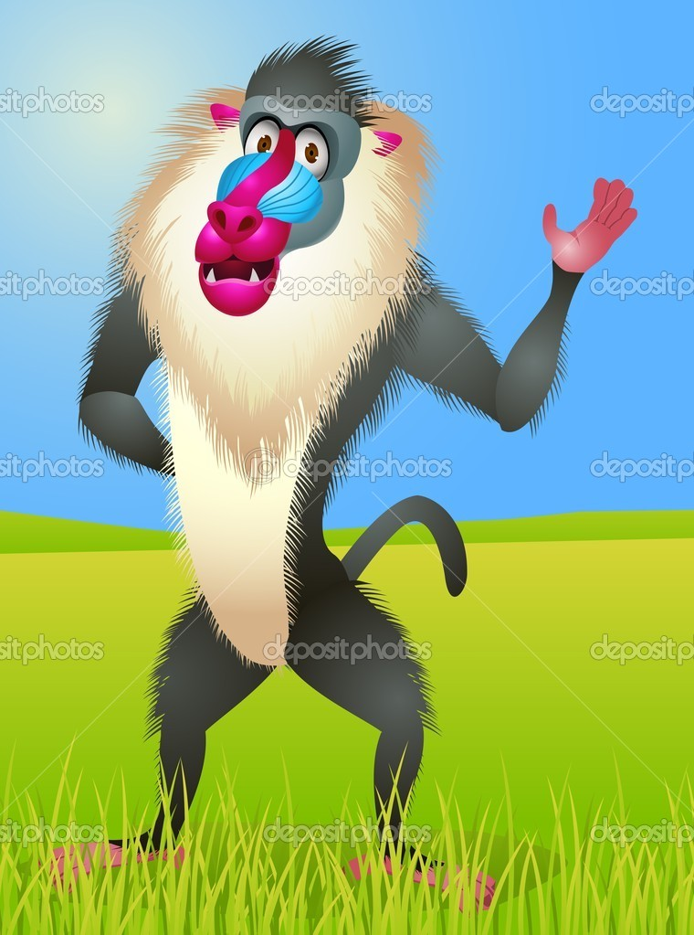 Baboon Cartoon Vector Image By C Idesign2000 Vector Stock 10351649 Browse our baboon cartoon images, graphics, and designs from +79.322 free vectors graphics. https depositphotos com 10351649 stock illustration baboon cartoon html