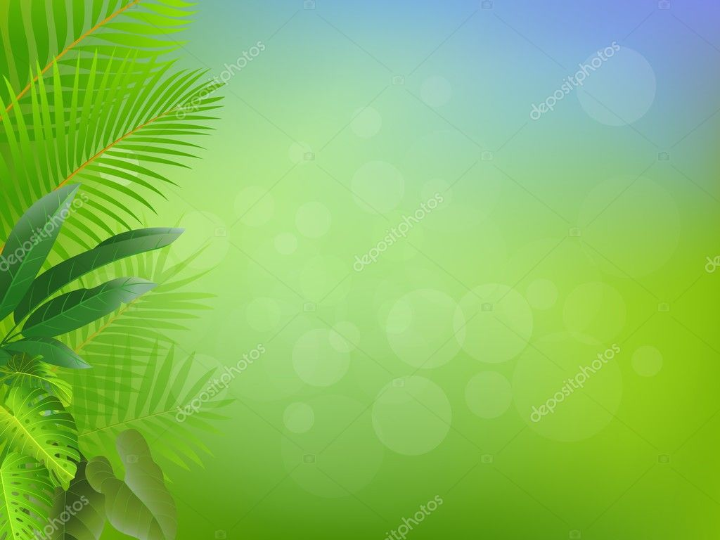 Palm tree frame background