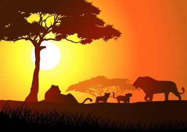 Silhouette of lion family