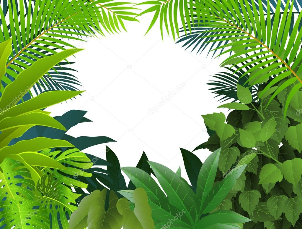 Tropical leaf background