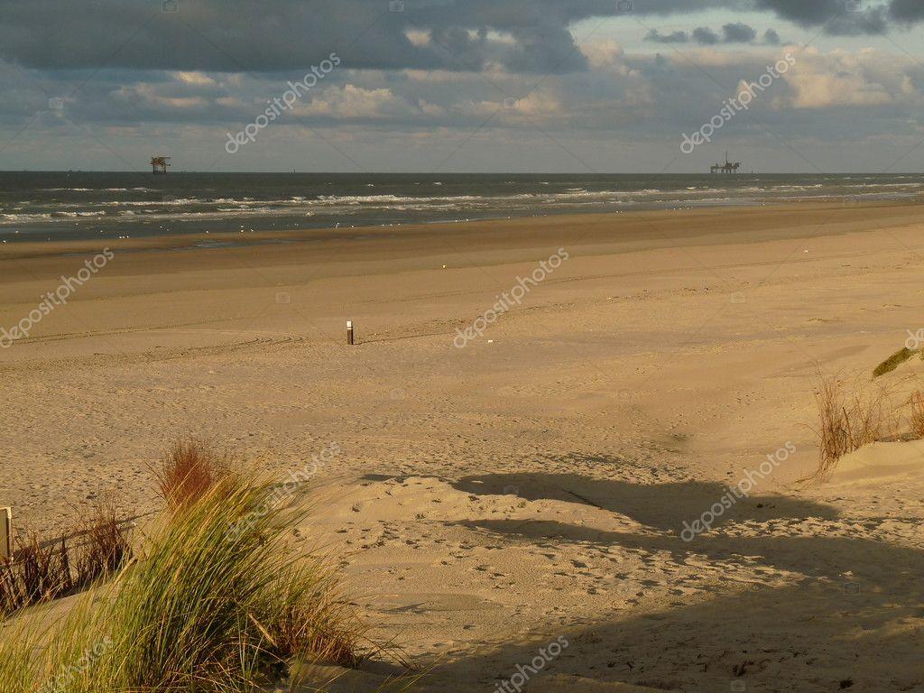 オランダの島アーメラント島で日...