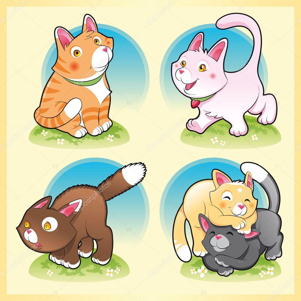 persian kittens for sale in houston texas