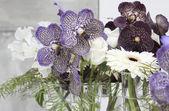 Fotografie malé vázy s orchideje, růže a Gerber