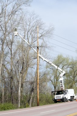 Worker in a lift truck, trimming trees beside power lines
