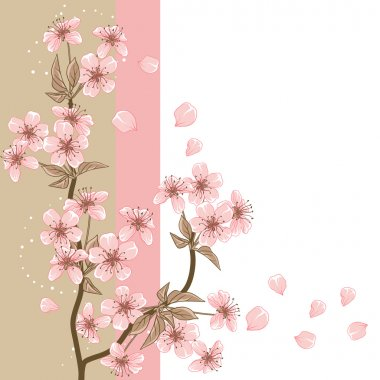 Cherry Tree (Card with stylized vector blossom) stock vector