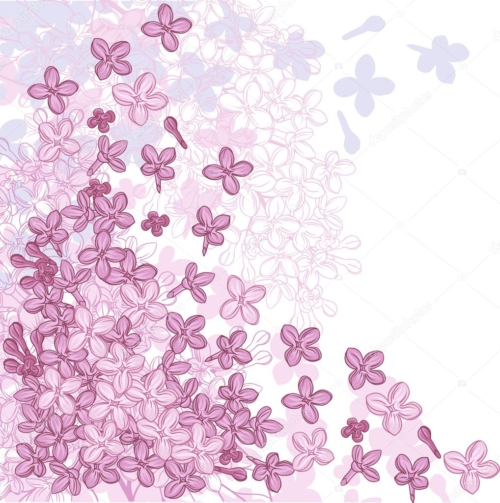 Vector background for design with flowers of lilac.
