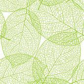 Fotografie čerstvé zelené listy pozadí - vektorové ilustrace