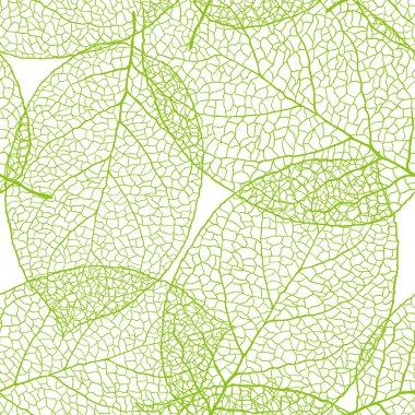 """Картина, постер, плакат, фотообои """"свежие зеленые листья фона - векторная иллюстрация """", артикул 9889036"""