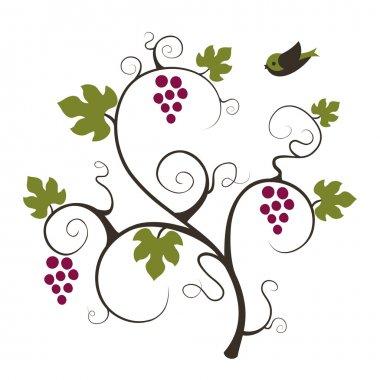 Elegance grape vine with flying birds.
