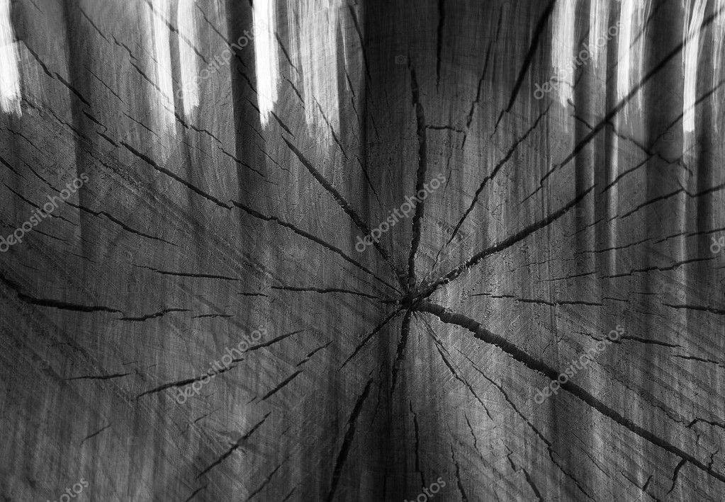 Legno Bianco E Nero : Arte legno bianco e nero u foto stock cumulus