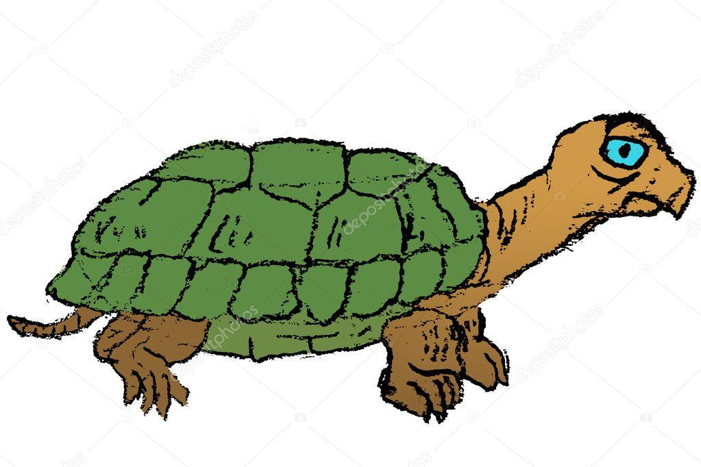 croquis dibujado a mano color de tortuga — Fotos de Stock © n ...
