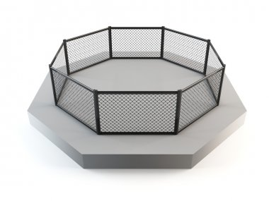 Cage fighting octagon
