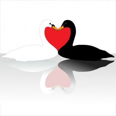 Two swans clip art vector