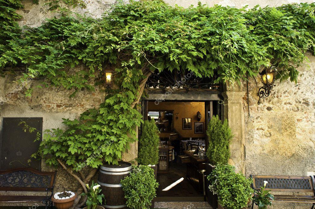 Wisteria and garden patio, Verona, Italy