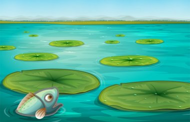 Illustration of lily pads on water stock vector