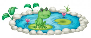 Illustration of a small pond with a frog stock vector