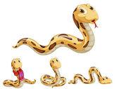 Fotografia serie di serpente