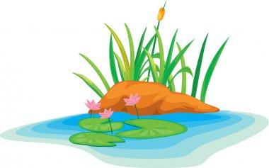 Illustration lotus flowers stock vector