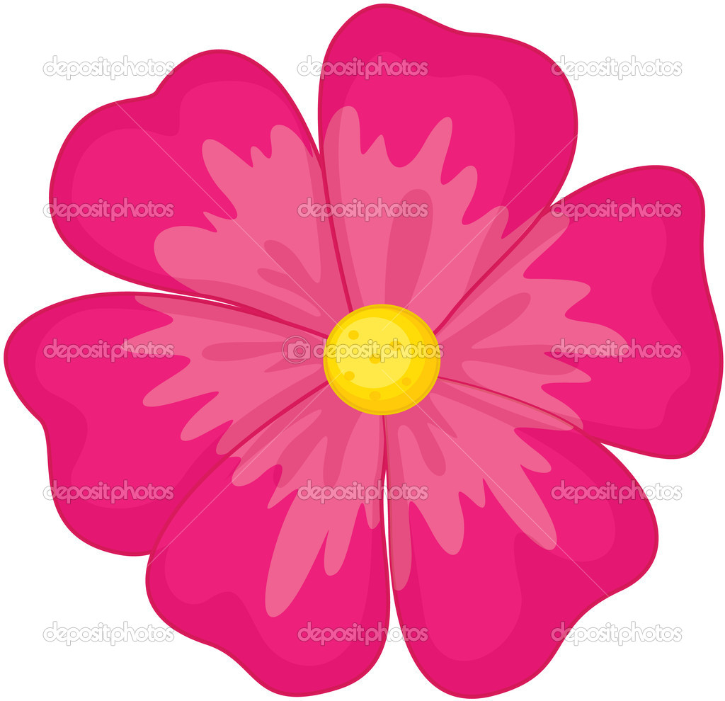 Fleur Illustration fleur — image vectorielle interactimages © #9994393