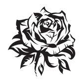 absztrakt rose