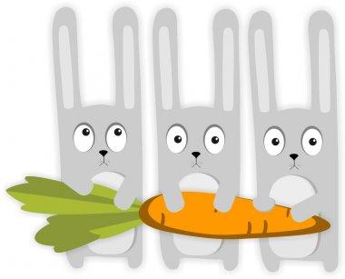 Cartoon rabbits and carrot
