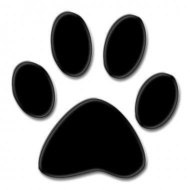 Paw print on white