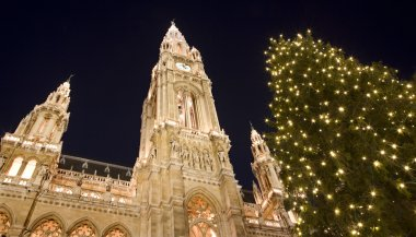 Vienna - christmastree for town-hall