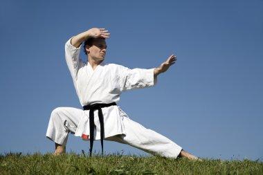 Karate training in kimono - kata
