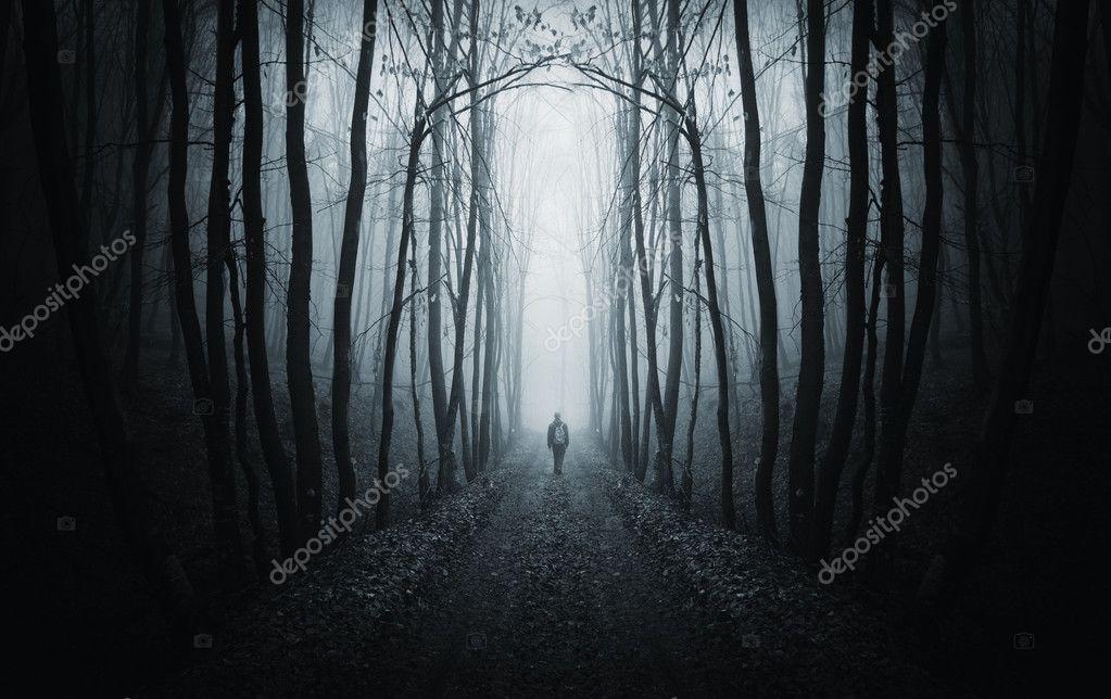 Фотообои Человек идет по тропинке в темный лес с туман