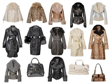 Fur coat collection