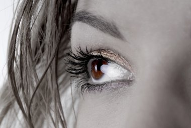 Picture of dreamy female beautiful eye stock vector