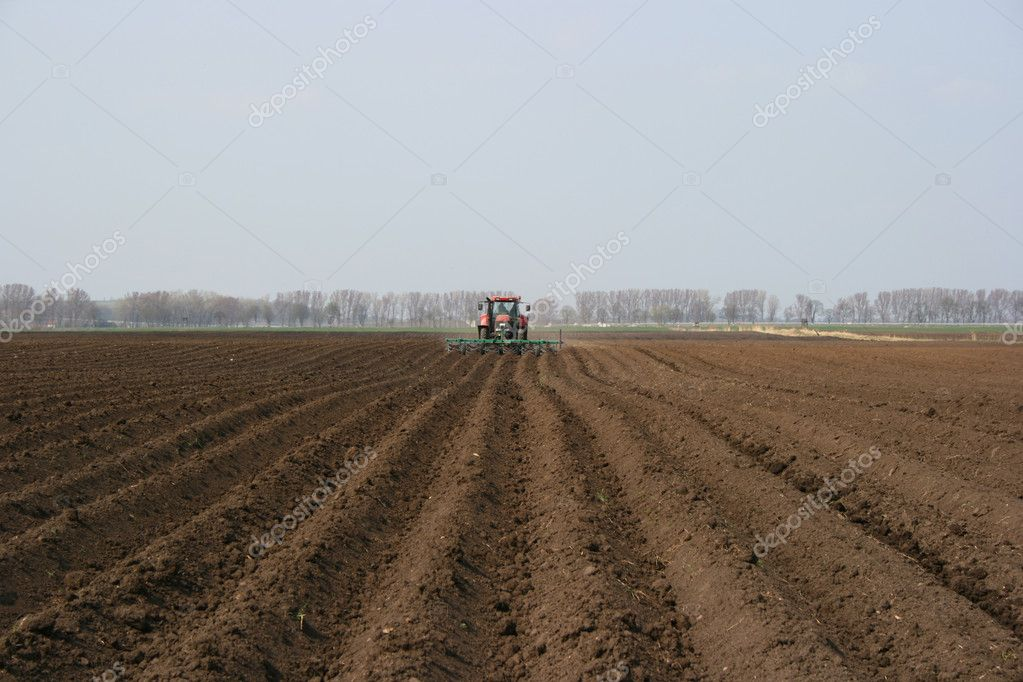 Tractor plowing rows on a field