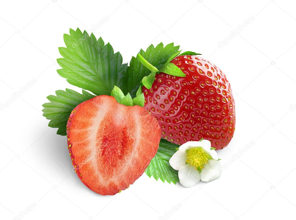 Strawberries with leaves and flower. Isolated on a white background