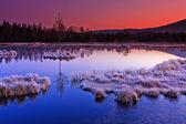 Fotografie zmrazené moor svítání
