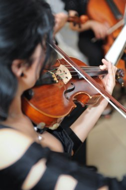 The violinist: Musician playing violin at the opera