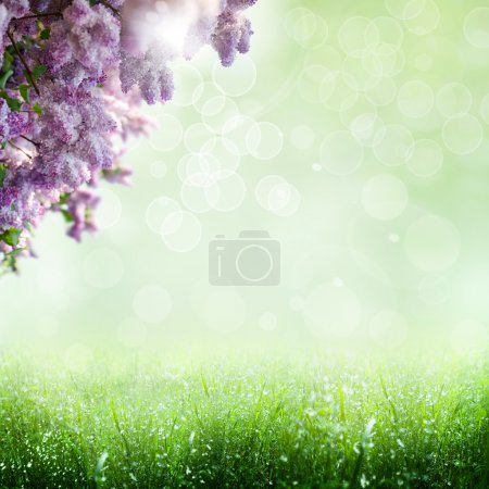 Summer time. abstract optimistic backgrounds with lilac tree