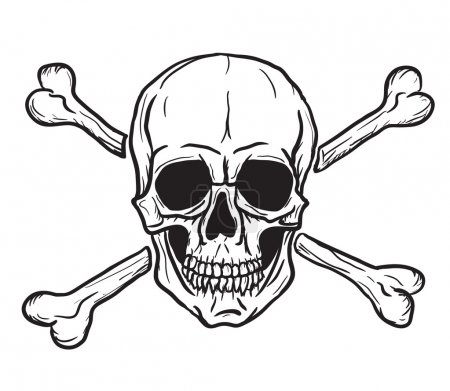 Skull and Crossbones isolated over white backgroun...