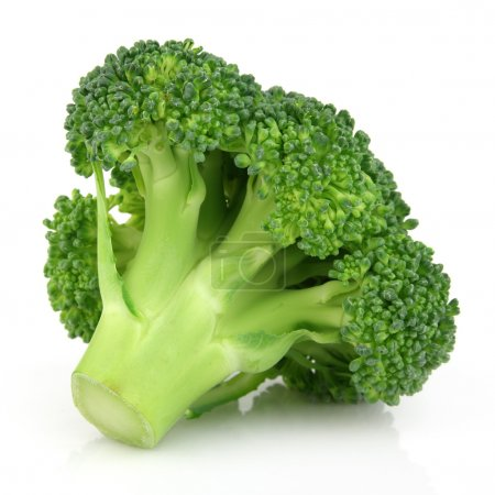 Photo for Fresh broccoli in closeup - Royalty Free Image