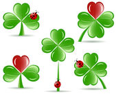 Vector illustration of set of shamrocks with four lucky leaves ladybug isolated on white background St Patrick's day theme