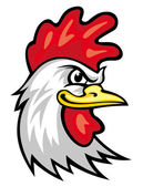 Head of cartoon rooster isolated on white Vector illustration