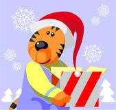 Tiger color 05