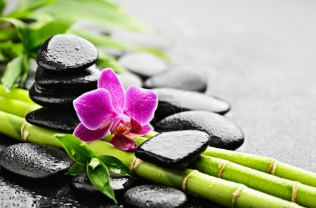 Zen basalt stones and orchid with dew...