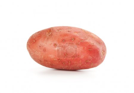 Photo for Potato isolated on white background close up - Royalty Free Image