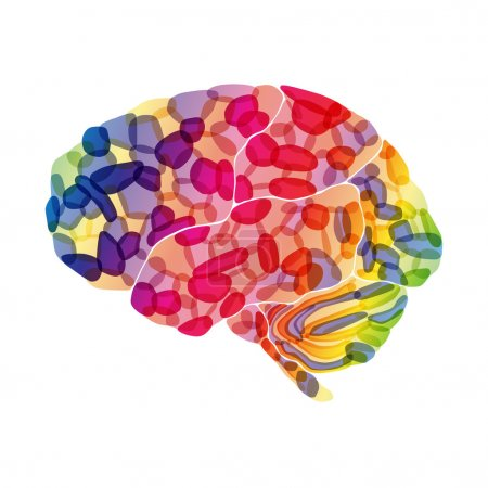 Human brain, colorful thoughts, vector abstract background