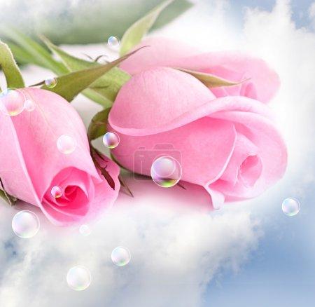 Photo pour Trois roses roses dans les nuages - image libre de droit