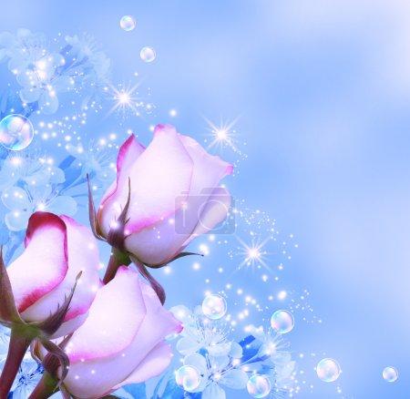 Roses et étoiles