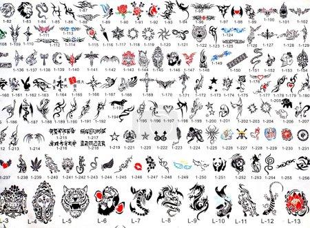 Photo pour Un magasin de tatouage local affiche sa sélection de modèles disponibles - image libre de droit