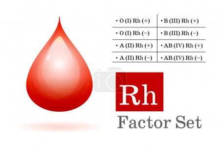 Rh factor and blood drop